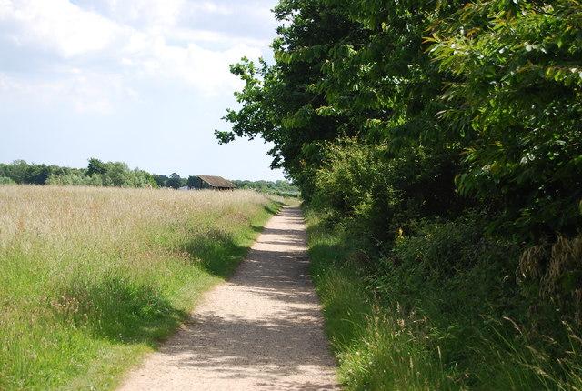 Footpath to Alton Lane