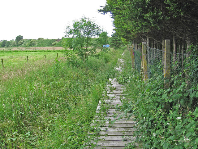 Burscough - footpath over duckboards