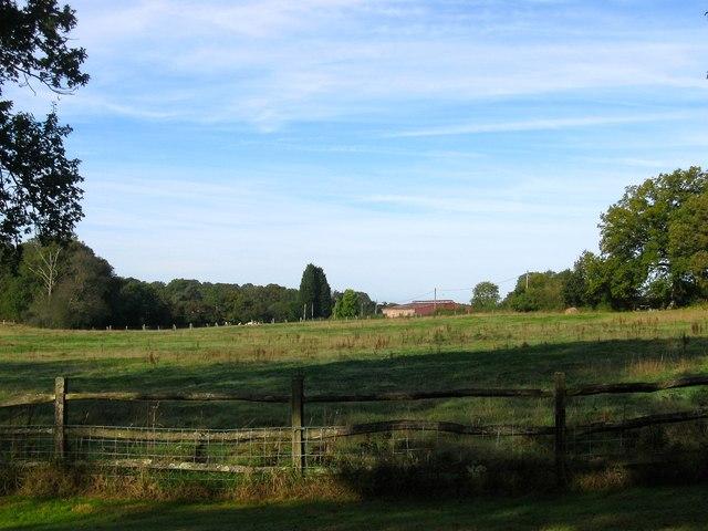 Upper Crouch Field