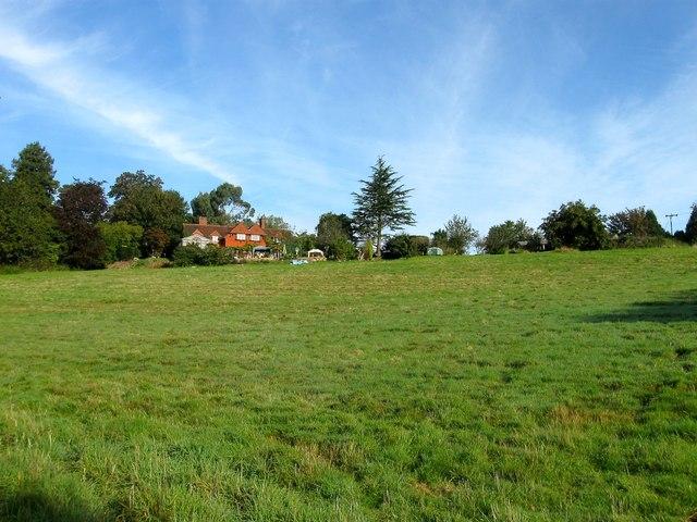 Steers Field