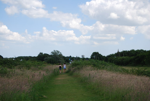 Grassy footpath