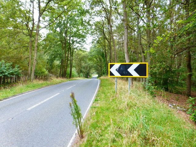 Approaching the bend on Bourley Road