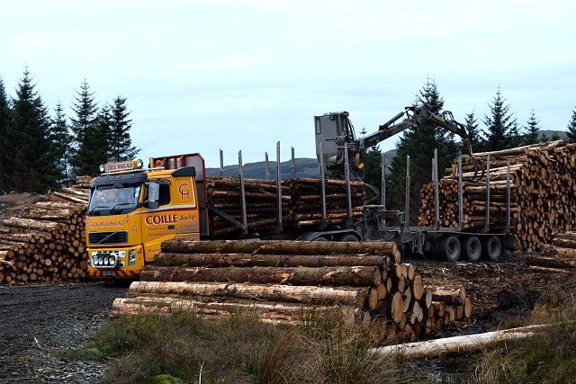 Log lorry loading