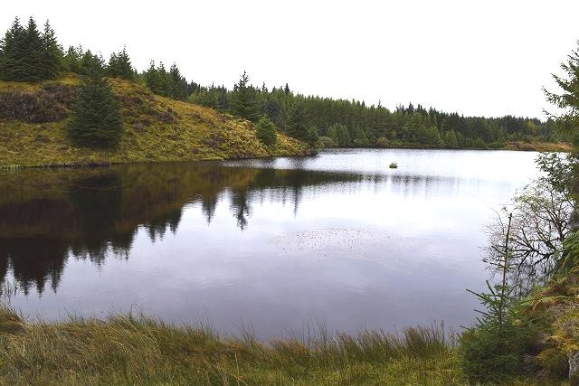Lochan Lus Dubha