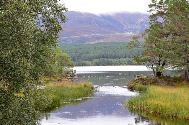 Outflow of Loch Morlich