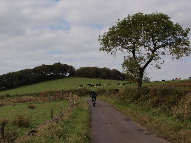 Minor road near Cairn Hill