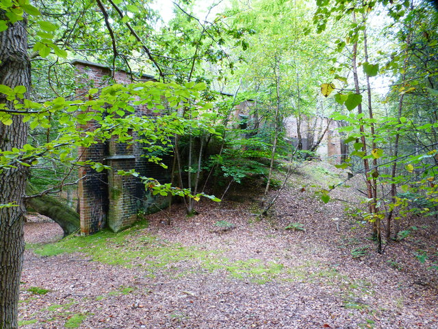 Military wall in woods by Rushmoor Road