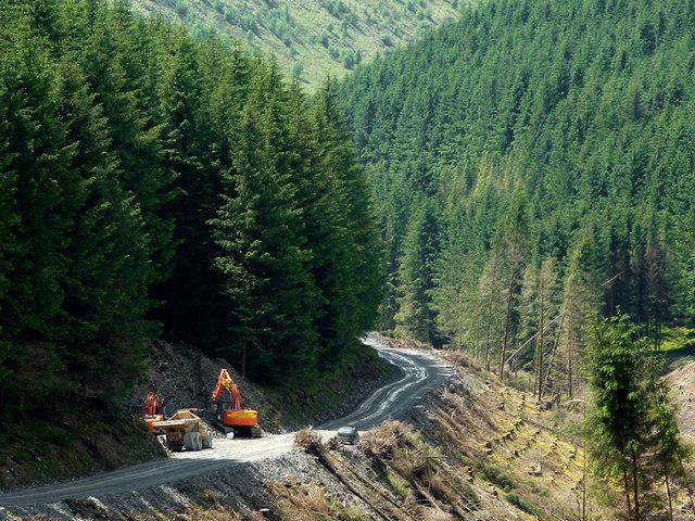 Forestry road descending Cwm Nant-y-Fedw, Powys