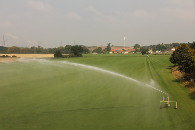 Turf irrigation