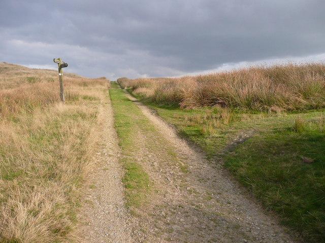 Junction of bridleways