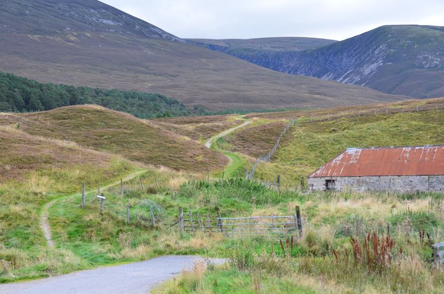 Path at Achlean, Glen Feshie