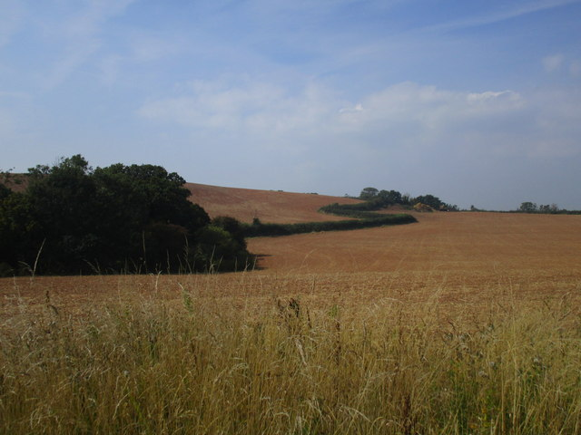 Zigzag field boundary