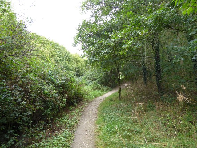 The Co-operative Way in Woodland Woods (1)