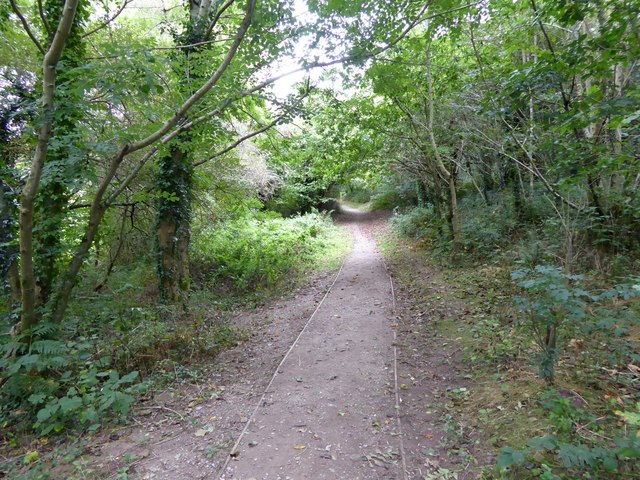 The Co-operative Way in Woodland Woods (2)