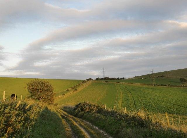 View eastward towards Steep Down