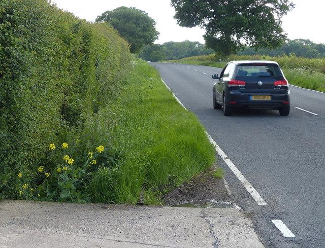 The B4065 near Milethorne Farm