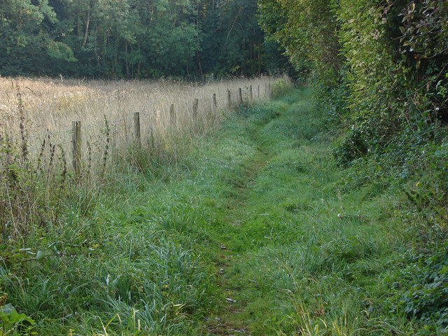 Permissive footpath, East Horsley