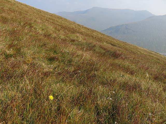 Southern slopes of Beinn Mhanach