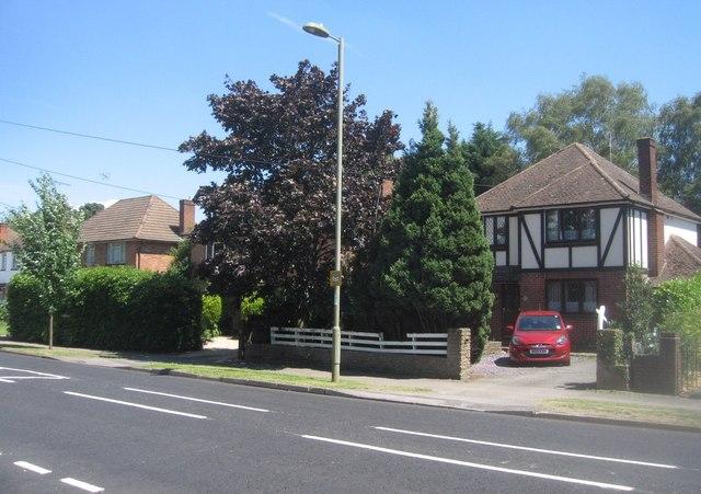 Houses on Prospect Road