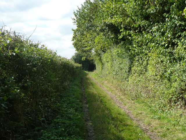 Byway towards Jack's Green