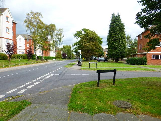 Looking east on Deadbrook Lane