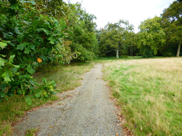Path by Bourley Camping Ground looking north