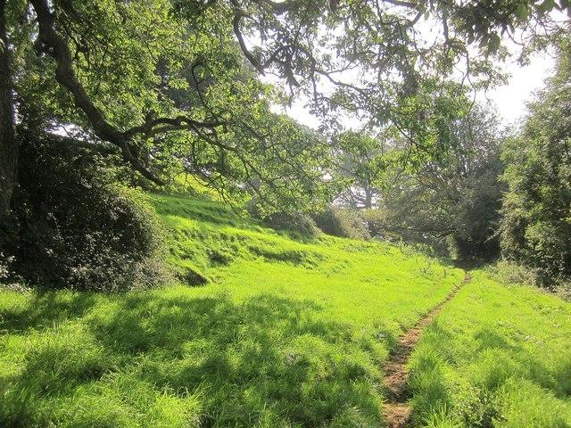 Cotswold Way at Old Sodbury