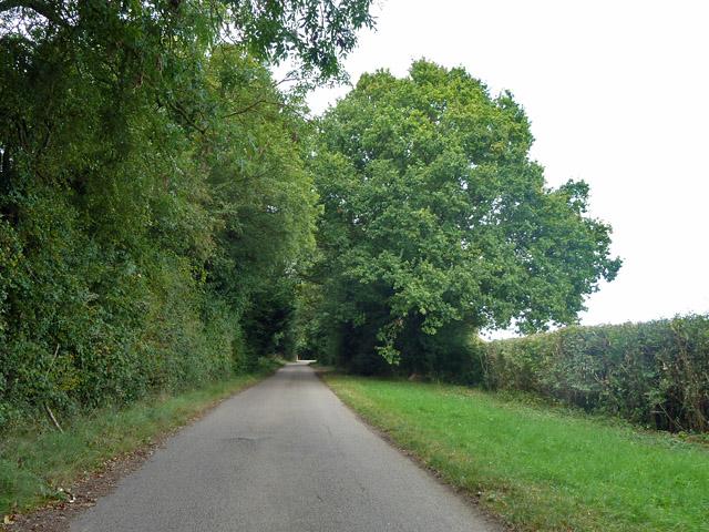 Chickney Lane