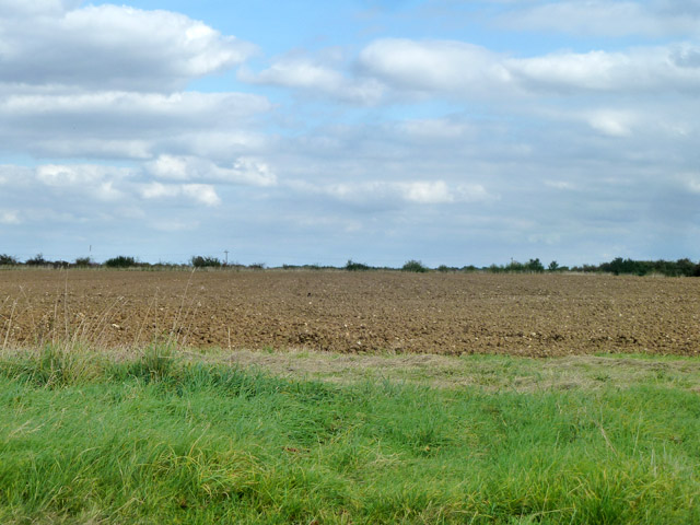 Ploughed field south of  Henham