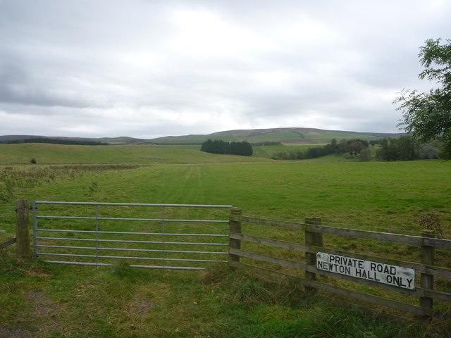 East Lothian Landscape : Fieldscene At Newton Hall Road-end