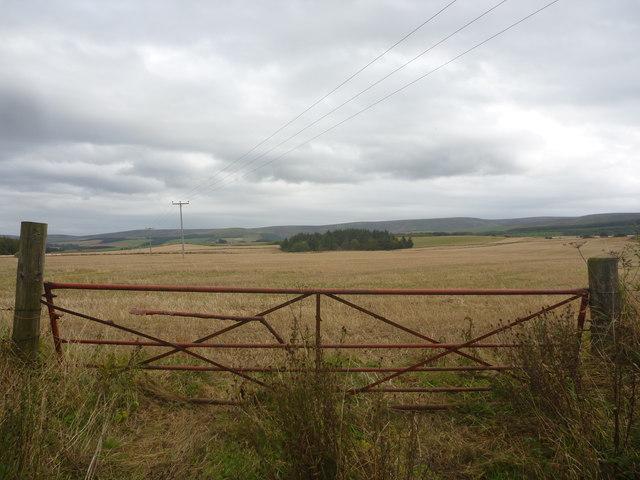 Rural East Lothian : Gateway Beside The Newton Hall Road