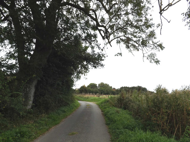 Cook's Lane, Wortwell