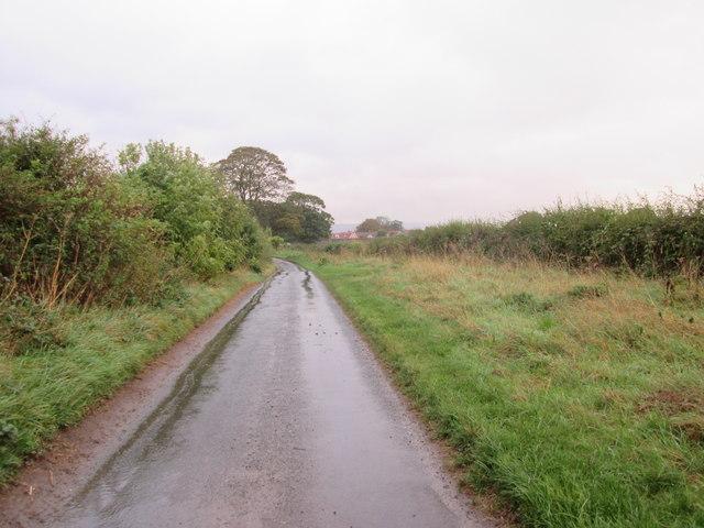 Great  Moor  Road  into  Hutton  Buscel