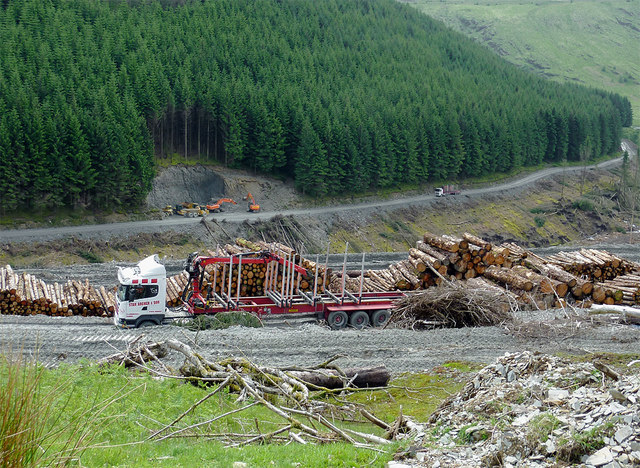 Timber extraction in Cwm Nant-y-Fedw, Powys