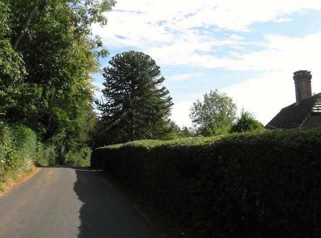 Butchers, Ryecroft Road, Bolney