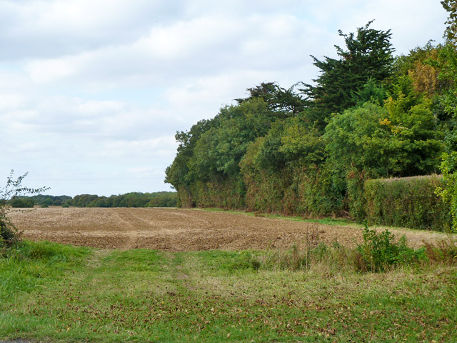 Field by Tendrings Farm