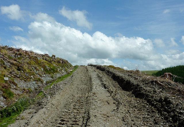 Forestry Road south-east of Bryn-Du, Powys