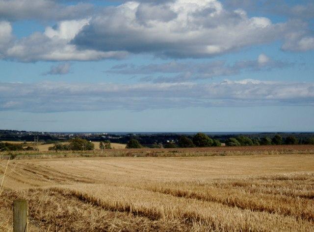 Field at Ashludie