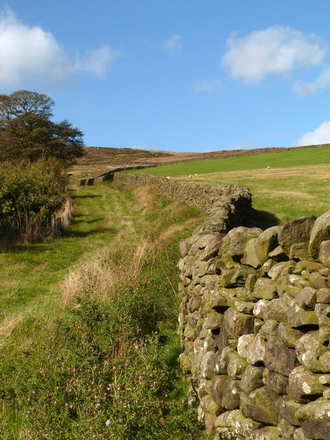 Dry stone wall on the path to Embsay Crag