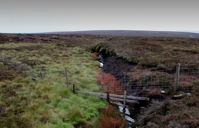 Tributary of Gate Up Gill