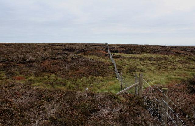 Boundary Fence below Henstone Band