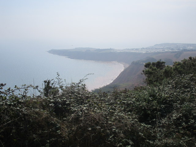 View towards Littleham Cove and Straight Point