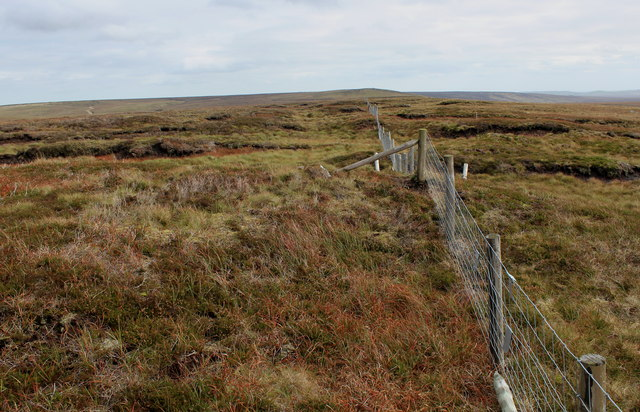 Boundary Fence South West of Meugher