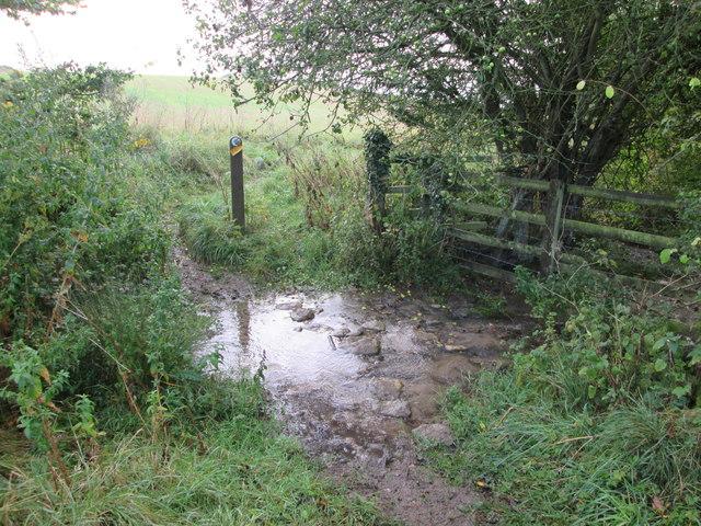 Bridleway  crossing  Sawdon  Beck