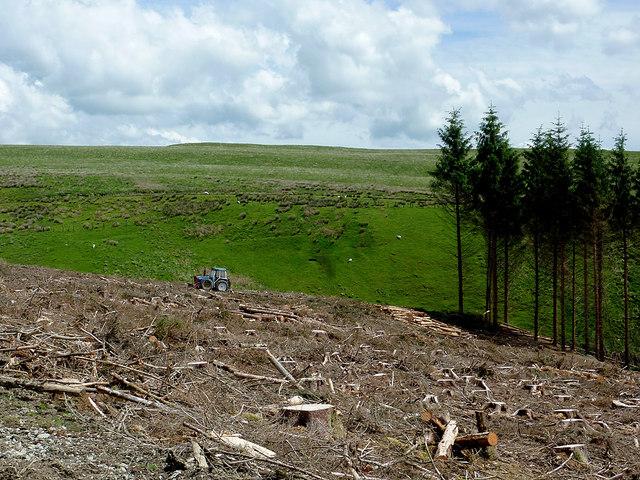 Clear fell and moorland south-west of Bryn Mawr, Powys