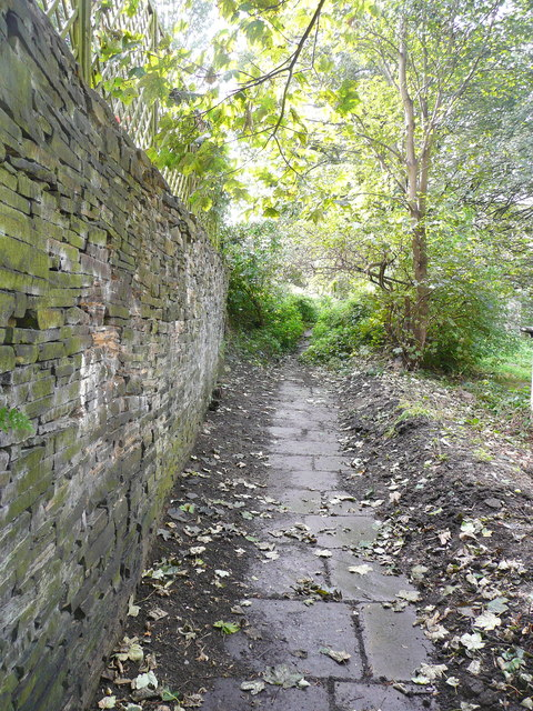 The footpath (Brighouse 103) from Delf Hill to Spout Hill