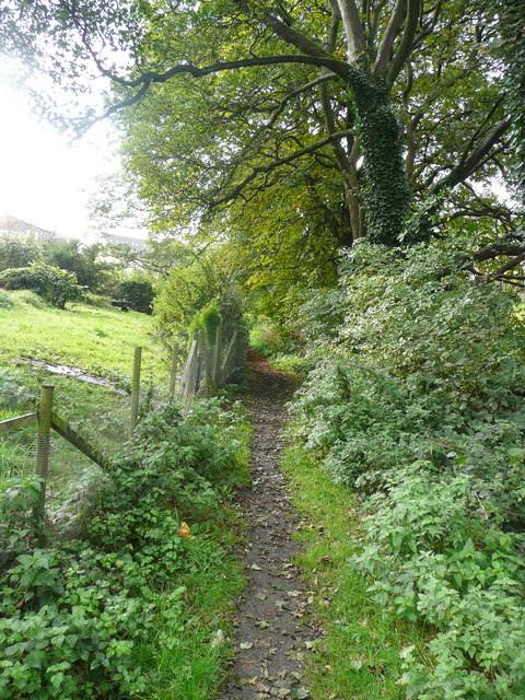 Footpath (Brighouse 103) from Delf Hill to Spout Hill