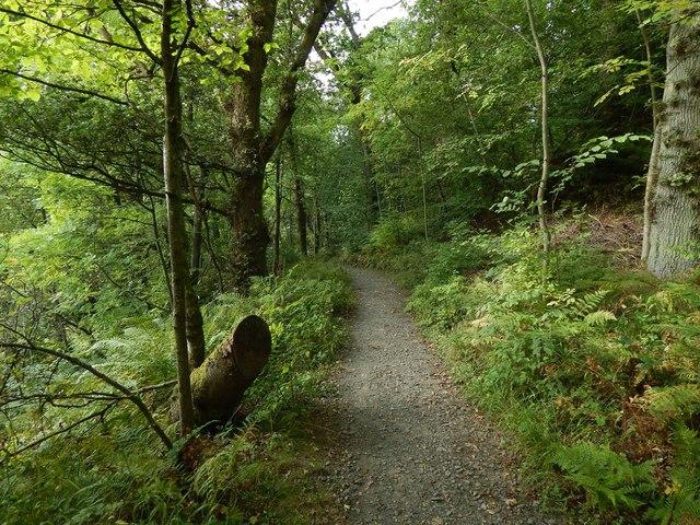 Overtoun House Nature Trail