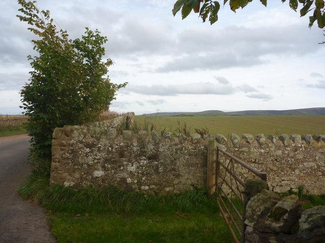 Rural East Lothian : Stone Field Boundaries Near Pishwanton
