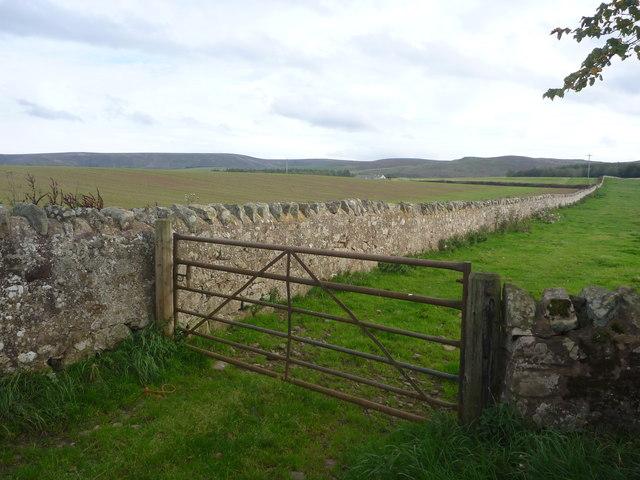 Rural East Lothian : Stone Field Boundary Near Pishwanton